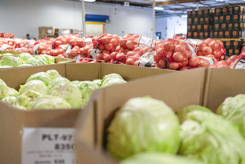 Bulk lettuce and onions in a warehouse